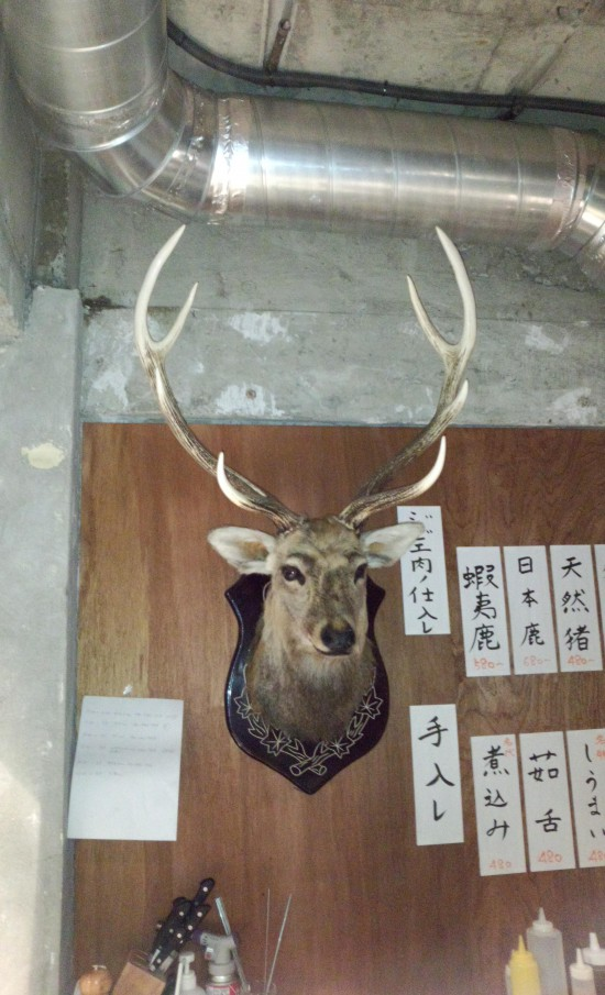 わたしは 1Fの蝦夷鹿。 2、3Fには樋熊がいます。