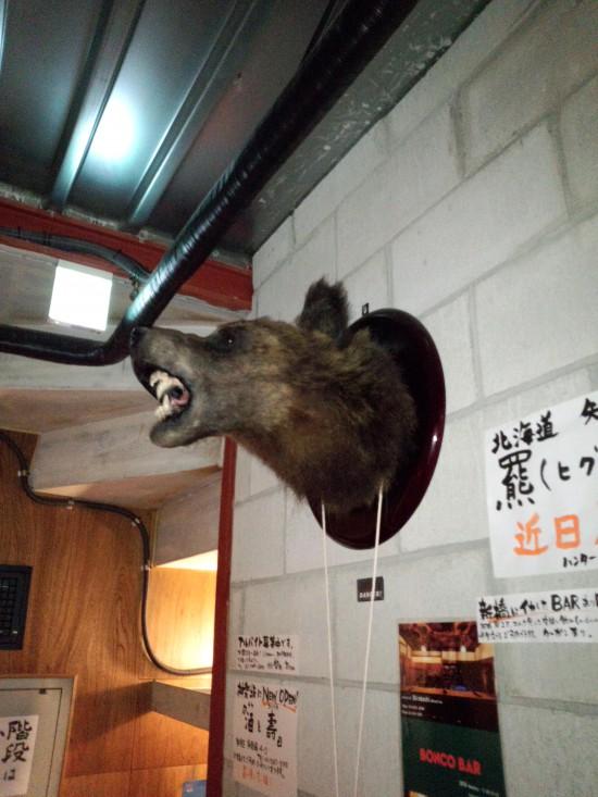わたしは2Fの樋熊です。ガオォォ~!