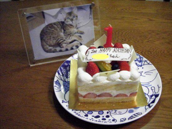 ちょっとしょっぱいケーキ・・・